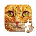 Unlimited Puzzles – free jigsaw for kids and adult Mod Unlimited Money