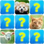 Memory Game Animals Mod Unlimited Money
